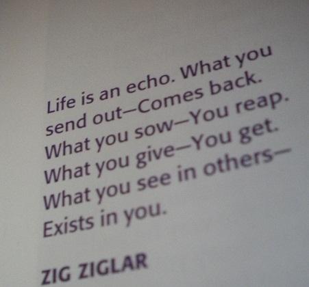 Zig 3
