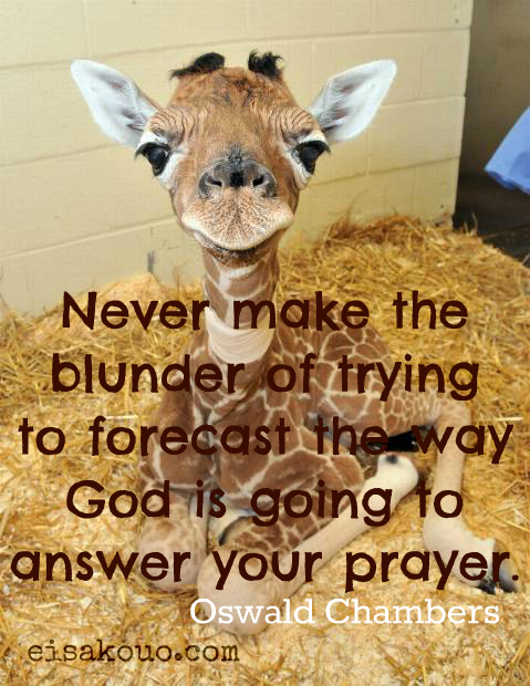 forecast answers to prayer