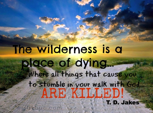 the wilderness is a place of dying